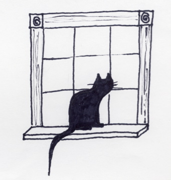 Windowsill Cat