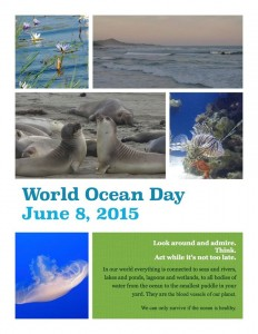 World Ocean Day - poster